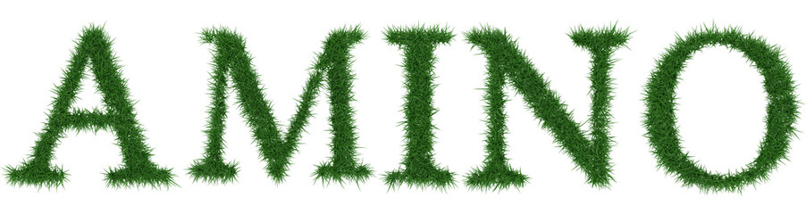 Amino - 3D rendering fresh Grass letters isolated on whhite background.