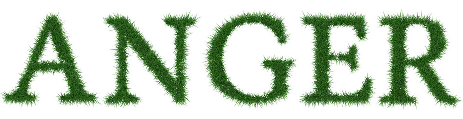 Anger - 3D rendering fresh Grass letters isolated on whhite background.