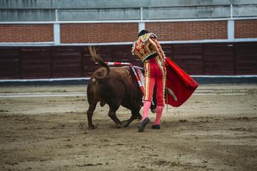 Printed roller blinds Bullfighting Bullfighter in a bullring.