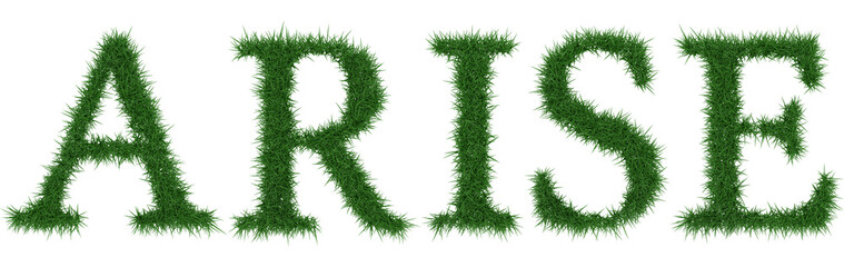 Arise - 3D rendering fresh Grass letters isolated on whhite background.