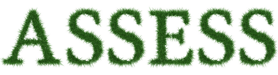 Assess - 3D rendering fresh Grass letters isolated on whhite background.