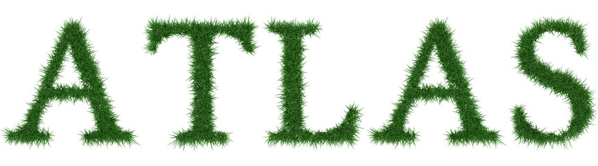 Atlas - 3D rendering fresh Grass letters isolated on whhite background.