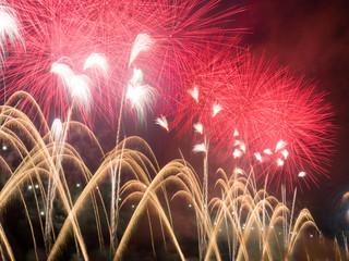 花火 hanabi fireworks #11
