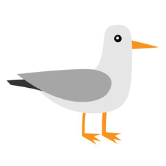 Albatross icon. Antarctica petrel Seagull wandering royal bird. Arctic animal collection. Cute cartoon baby character. Winter white background. Isolated. Flat design.
