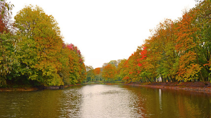 The lake in the Park. autumn beautiful.