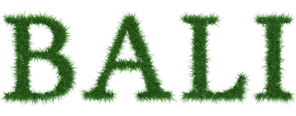 Bali - 3D rendering fresh Grass letters isolated on whhite background.