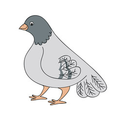 A simple vector drawing of a gray dove on a white background