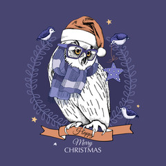 Christmas card. Great Horned Owl in a Santa's cap and in a knitted scarf with the birds at night. Vector illustration.