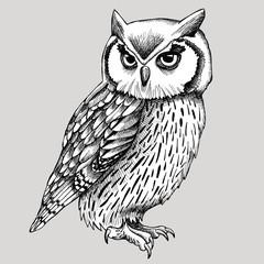 Owl Graphic Black & White