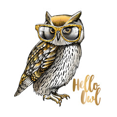 Photo Stands Owls cartoon Gold and Silver owl in a glitter glasses on a white background. Vector illustration.