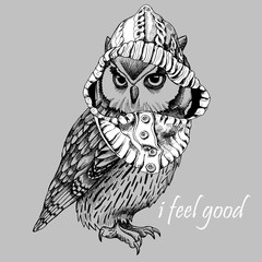 Owl in a hood on gray background. Vector illustration.