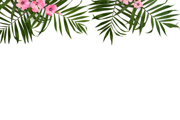 Tropical leaves palm tree and pink flowers malva on a white background. Top view, flat lay.