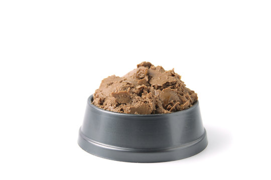 Wet food for dogs and cats  in bowl  on white background.