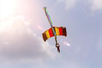 Foto auf AluDibond Luftsport parachutist in a summer sky
