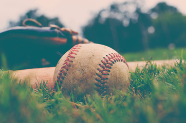 Close up of baseball in grass with bat and glove in background.  Grunge style sports image.