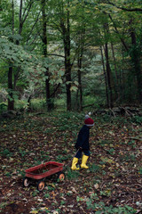 A little  boy pulling a wagon