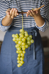 Woman holding fresh bunch of grapes.