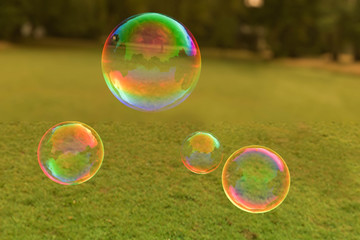 Colorful soap bubbles floating through the air