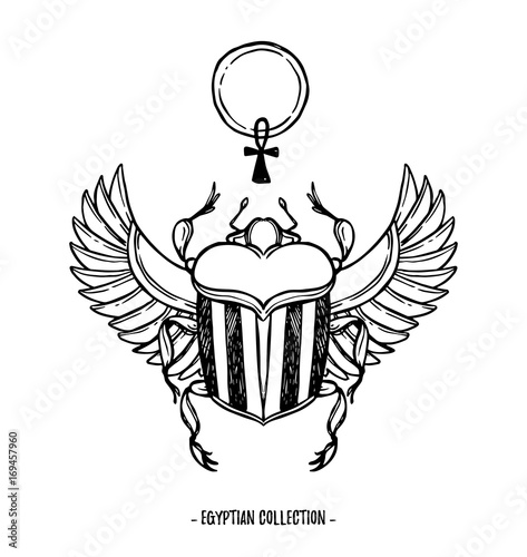 Hand Drawn Vector Illustration Egyptian Collection Scarab Beetle