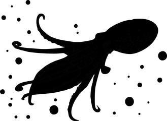 silhouette - squid