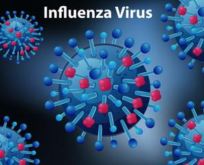 Close up diagram for Influenza virus