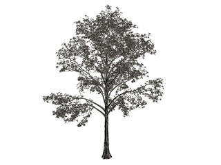 3d rendering of a silver tree isolated on a white background