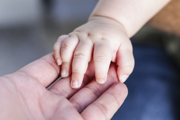 The father is holding the hand of the baby . Mother's and baby's hands. Family concept