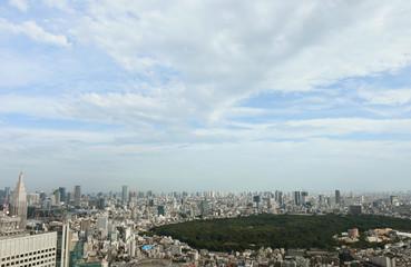 日本の都市風景「渋谷区(明治神宮や代々木公園方向)や港区などのビル群を望む)