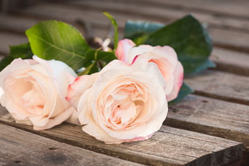 Three pink roses on a weathered plank table.