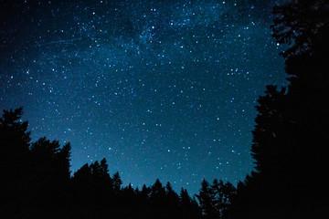 Night Sky Milky Way