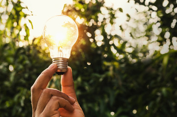 power energy in nature and hand holding light bulb with concept electric saving