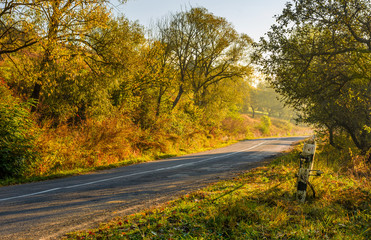 country road through forest in morning haze