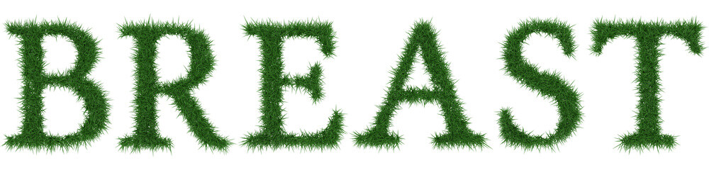 Breast - 3D rendering fresh Grass letters isolated on whhite background.