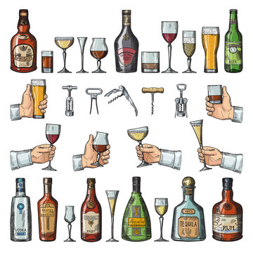 Set of alcoholic symbols. Different drinking glasses, wine bottles and corkscrews. Vector pictures in hand drawn style