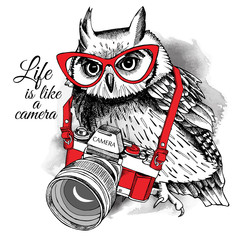 Owl in red glasses with a camera on gray background. Vector illustration.