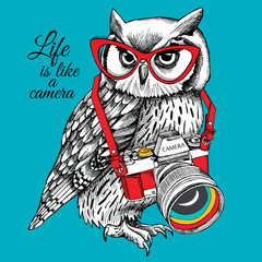 Bright poster. Owl in glasses with a camera on blue background. Vector illustration.
