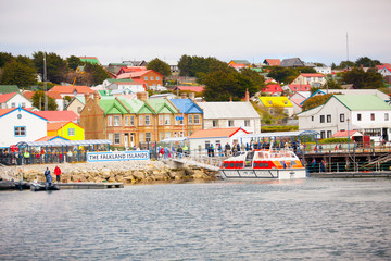 Falkland Islands Fotomurales