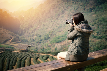Young beautiful Asian tourist carry a digital camera to take a photo of tea plantation field in the morning at Chiang Mai , north of Thailand. Warm tone effect