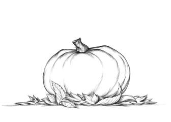 Einfacher Kürbis auf Herbstlaub