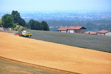 Fields in Val Tidone (Piacenza, Italy)