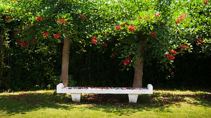 Bench in the park, Jogashima park, Miura, Japan
