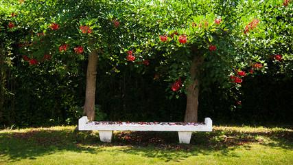 Bench in the park, Jogashima park, Miura, Japan