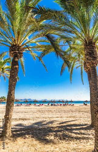 Spanien Mittelmeer Mallorca Bucht Von Alcudia Strand Mit Palmen