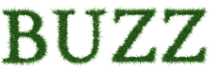 Buzz - 3D rendering fresh Grass letters isolated on whhite background.