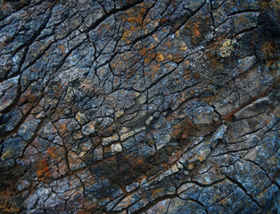 Photo sur Aluminium Les Textures colorful stone background.