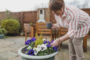 Foto auf Acrylglas Stiefmutterchen Senior Woman Looking At Her Pansies