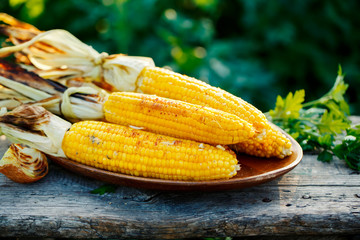 Grilled corn cobs on a plate.