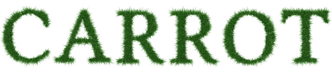 Carrot - 3D rendering fresh Grass letters isolated on whhite background.