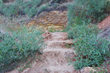 Rocky stairs. Down the overgrown path
