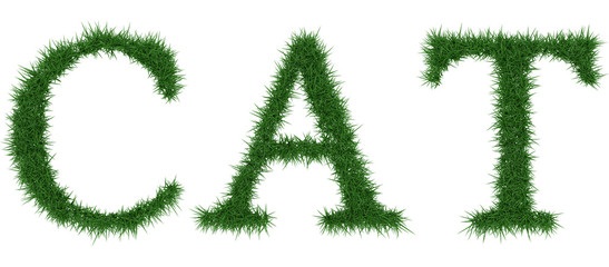 Cat - 3D rendering fresh Grass letters isolated on whhite background.